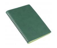 Ежедневник недатированный FOGGY, формат А5 Цвет: Зеленый