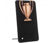 Награда Triumph Bronze