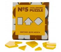 Головоломка Challenging Puzzle Acrylic, модель 5