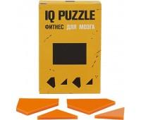 Головоломка IQ Puzzle Figures, прямоугольник